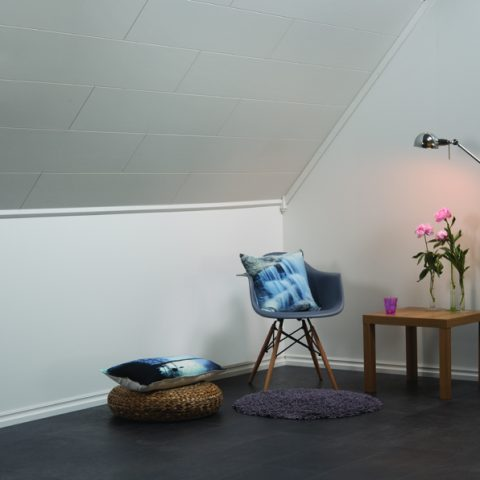 Basic Ceiling